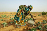 Oxfam Report: 'The Global Food System Is Broken'