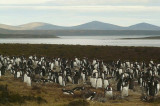Las Malvinas or the Falkland Islands? The Ugly Face of British Imperialism and Its Startling Cost