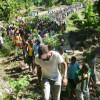 Land Grab at Ile a Vache: Haiti's Peasants Fight Back