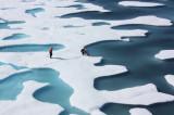 Antarctica's Accelerating Ice Collapse: Massive Sea Level Rise in Decades