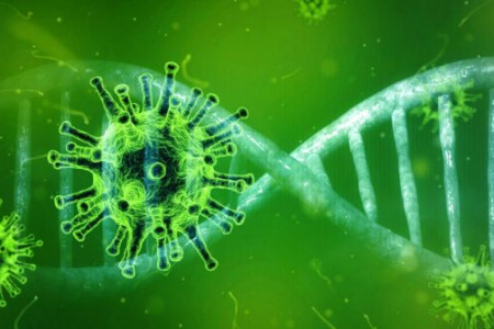 COVID-19: Questionable Coronavirus Evolution in Biosafety Level 4 Labs