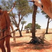 Kalahari_Hunter