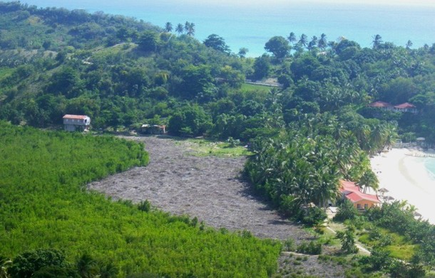 COUPE MANGROVE ABAKA BAY